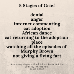 5 Stages of Grief denial anger internet commenting cat adoption African dance cat returning to the adoption place watching all the episodes of Murphy Brown not giving a flying fart